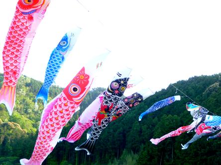 5月の連休と鯉のぼり